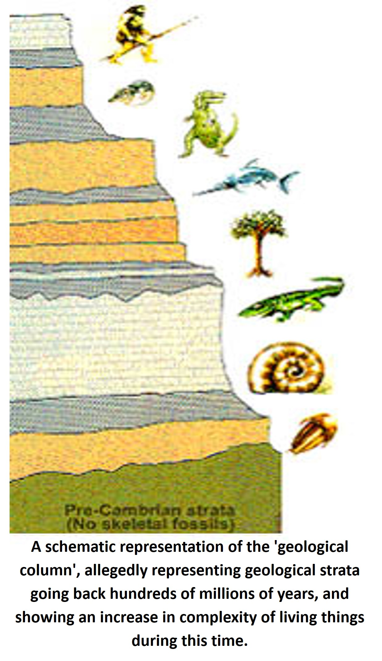A schematic representation of the 'geological column',