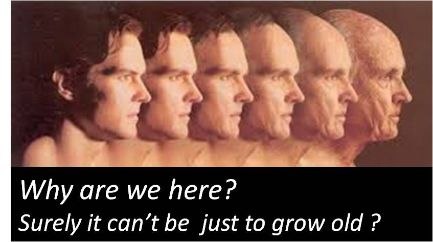 Why are we here?  Surely it can't be just to grow old??