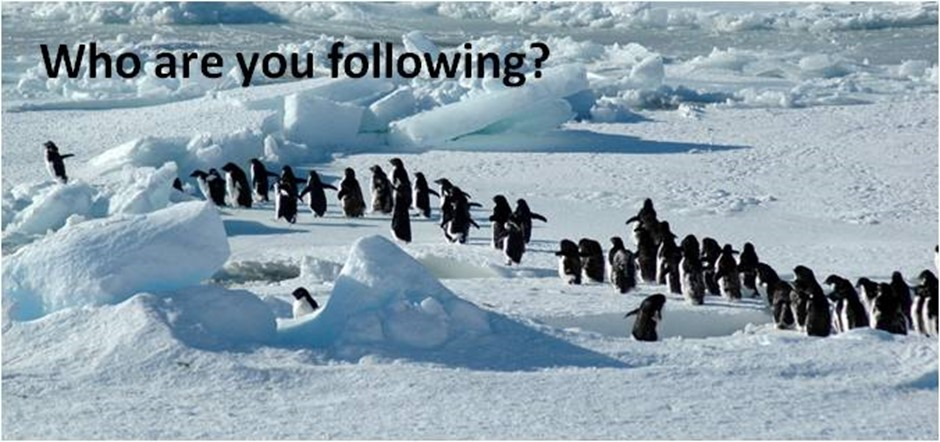 Don't just blindly follow others